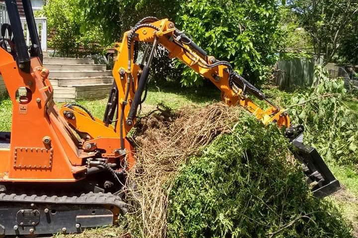 Tree Removal - High Point Tree Service